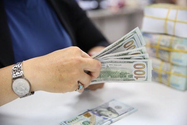 Ngân hàng Nhà nước cắt giảm lãi suất, thị trường tiền tệ giao động nhẹ