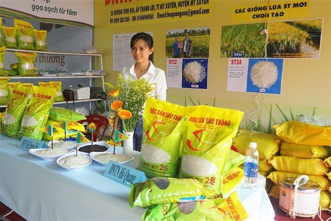 Gạo ST được thị trường Mỹ và Trung Quốc ưa chuộng. ẢNh: HD